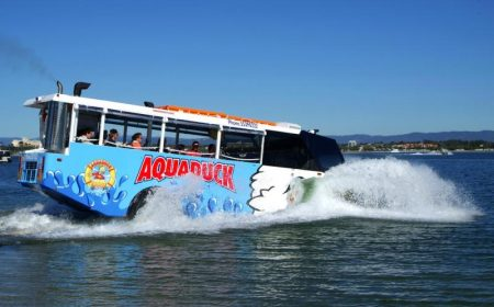 activitie_bus-party_aquaduck_gold_coast